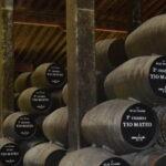 sherry winery-2096700-ca006516